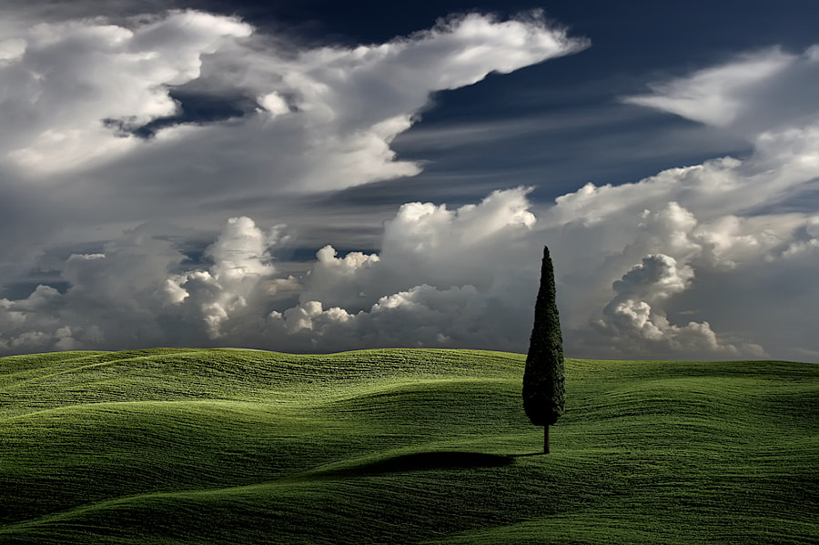 Photograph Waving by Carlos Gotay on 500px