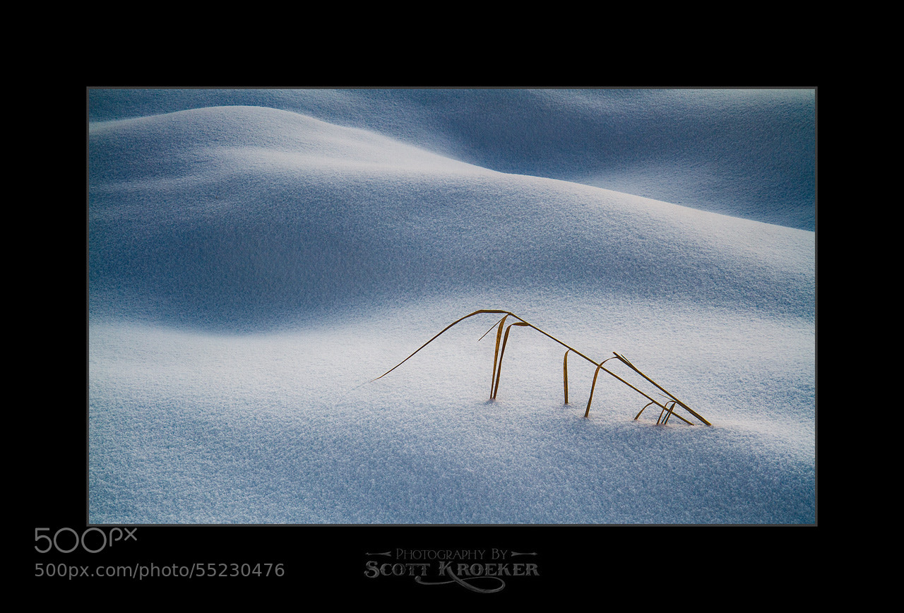Photograph Snow Dunes IV by Scott Kroeker on 500px