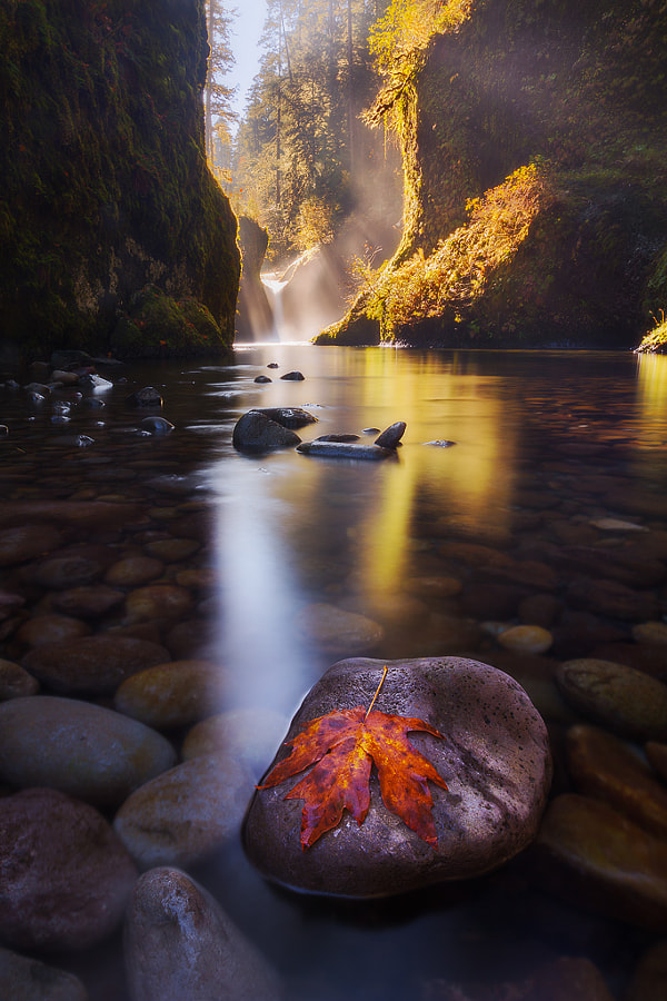 Fall at the Punchbowl by Dylan Toh  & Marianne Lim on 500px.com