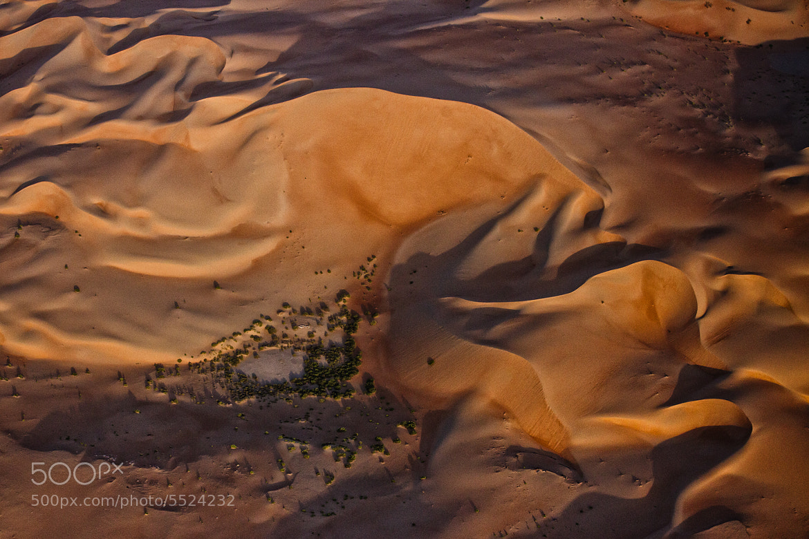 Photograph Empty Quarter Oasis by Beno Saradzic on 500px