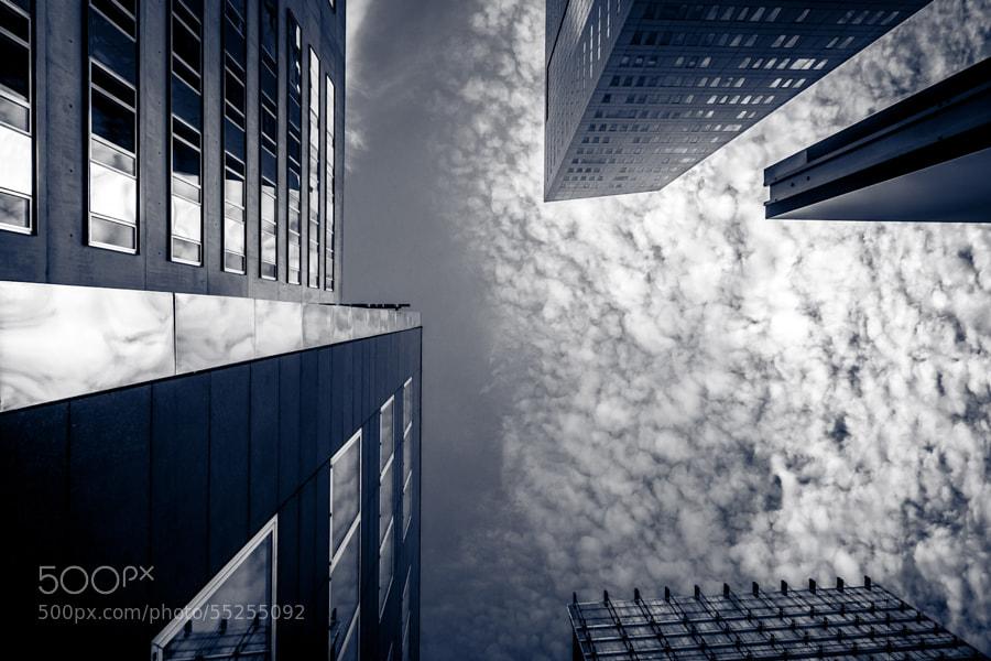 Vertigo by David Gorriez on 500px.com