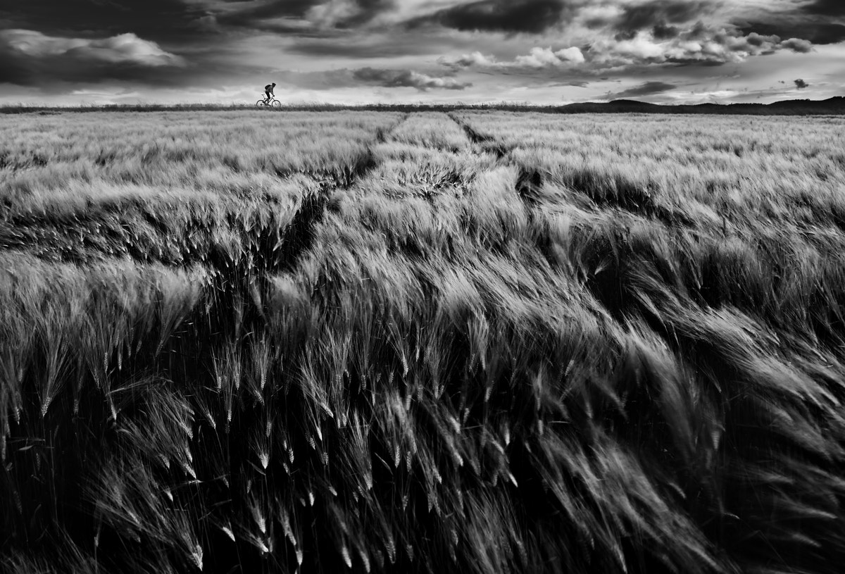 Photograph Against The Wind by Peter Kováč on 500px