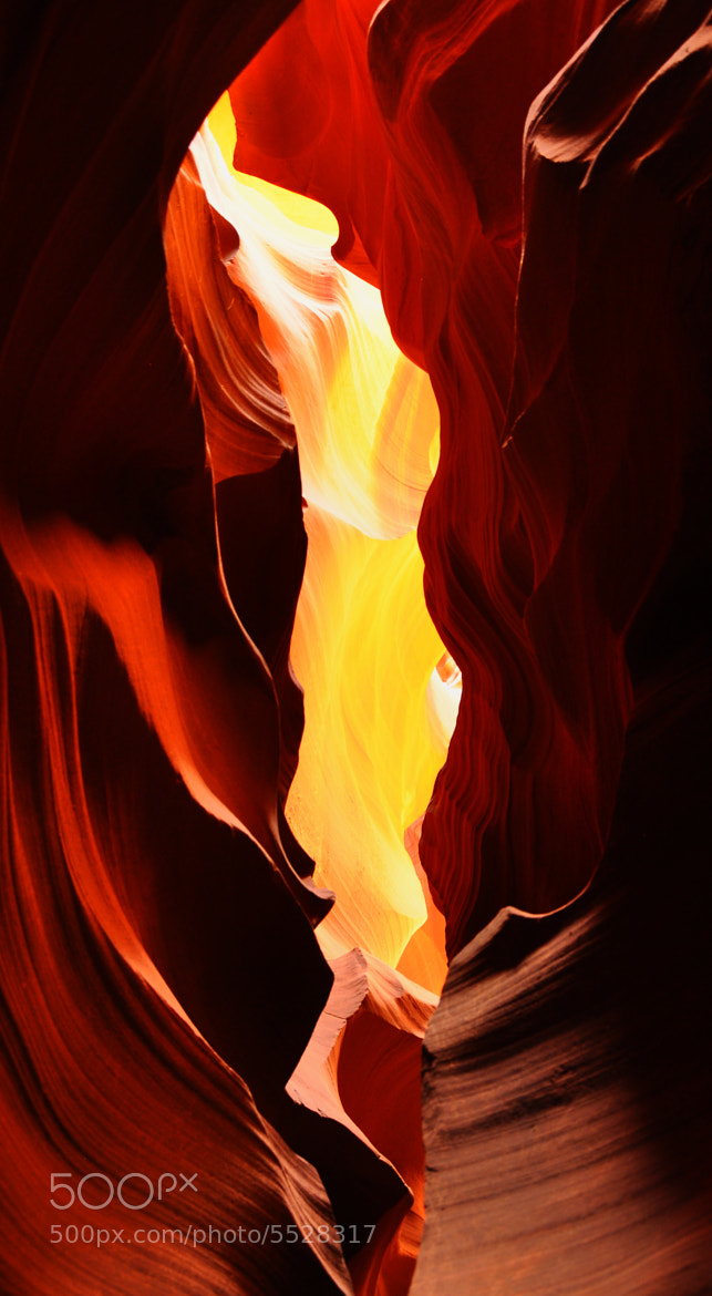 Photograph The flame by Andi Hauser on 500px