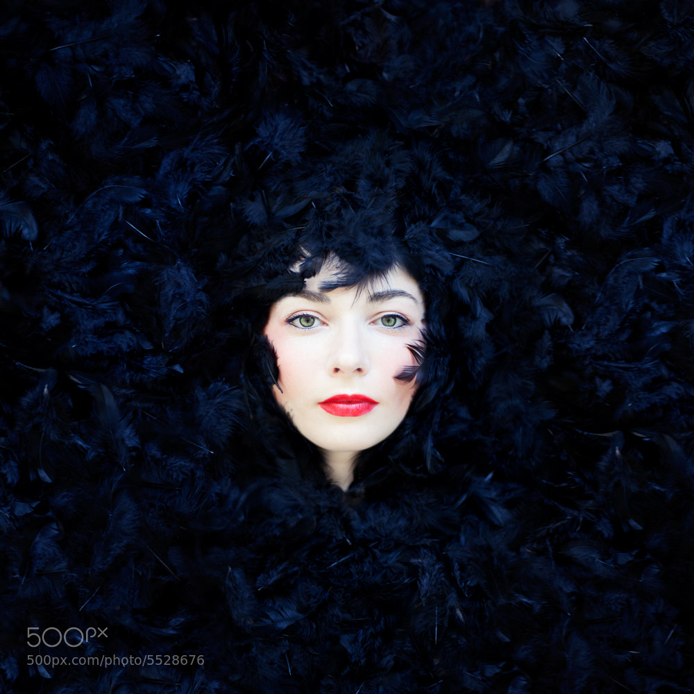 Photograph The Color Project - Black by Vanessa Paxton on 500px