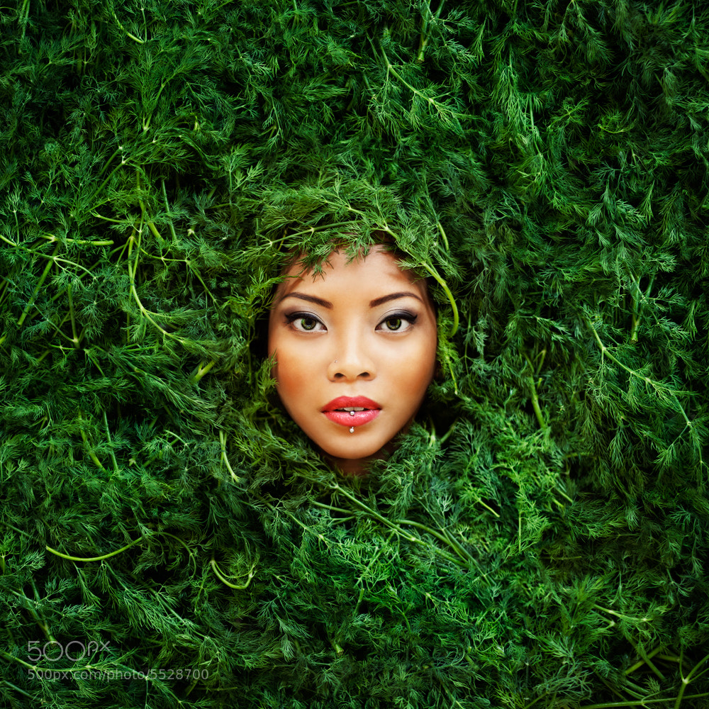 Photograph The Color Project - Green by Vanessa Paxton on 500px
