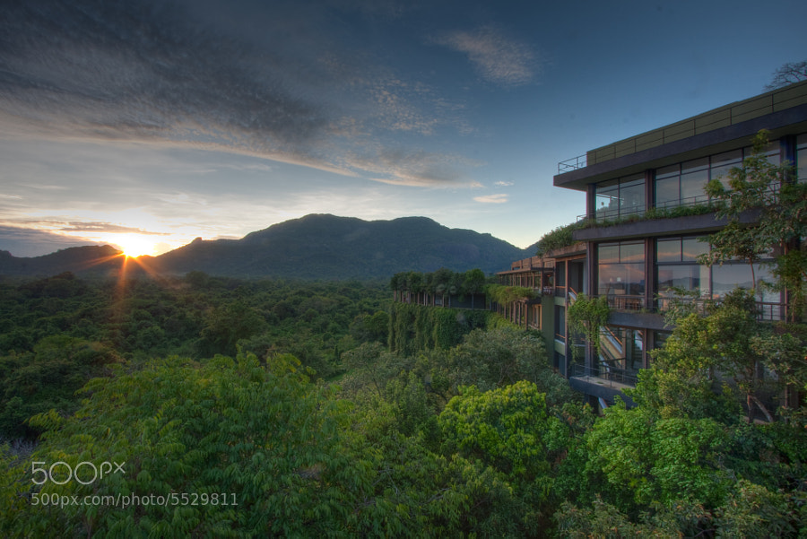 The Kandalama hotel in Sri Lanka is unbelievable.  It is a luxury hotel that is built right into the jungle in Sri Lanka.  It uses a sustainable eco-friendly design to integrate with the surrounding landscape.