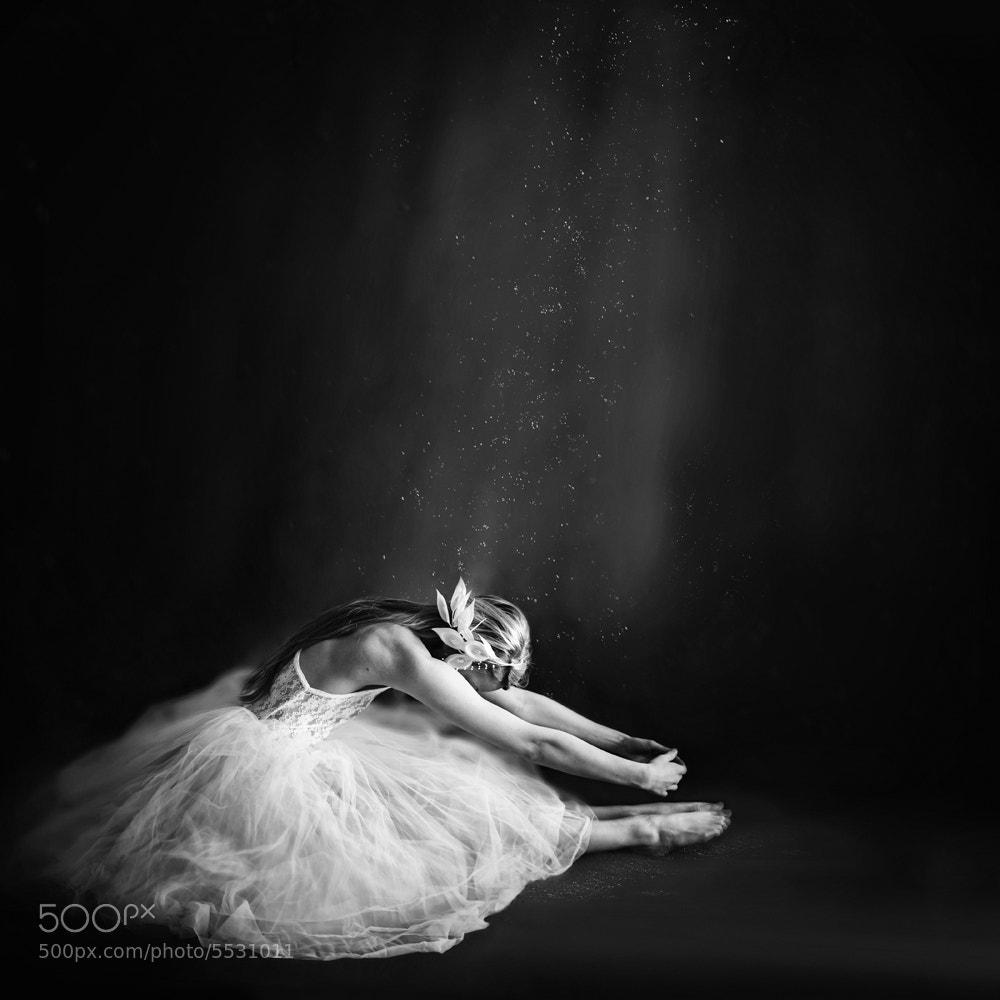 Photograph Ballerina III by Vanessa Paxton on 500px