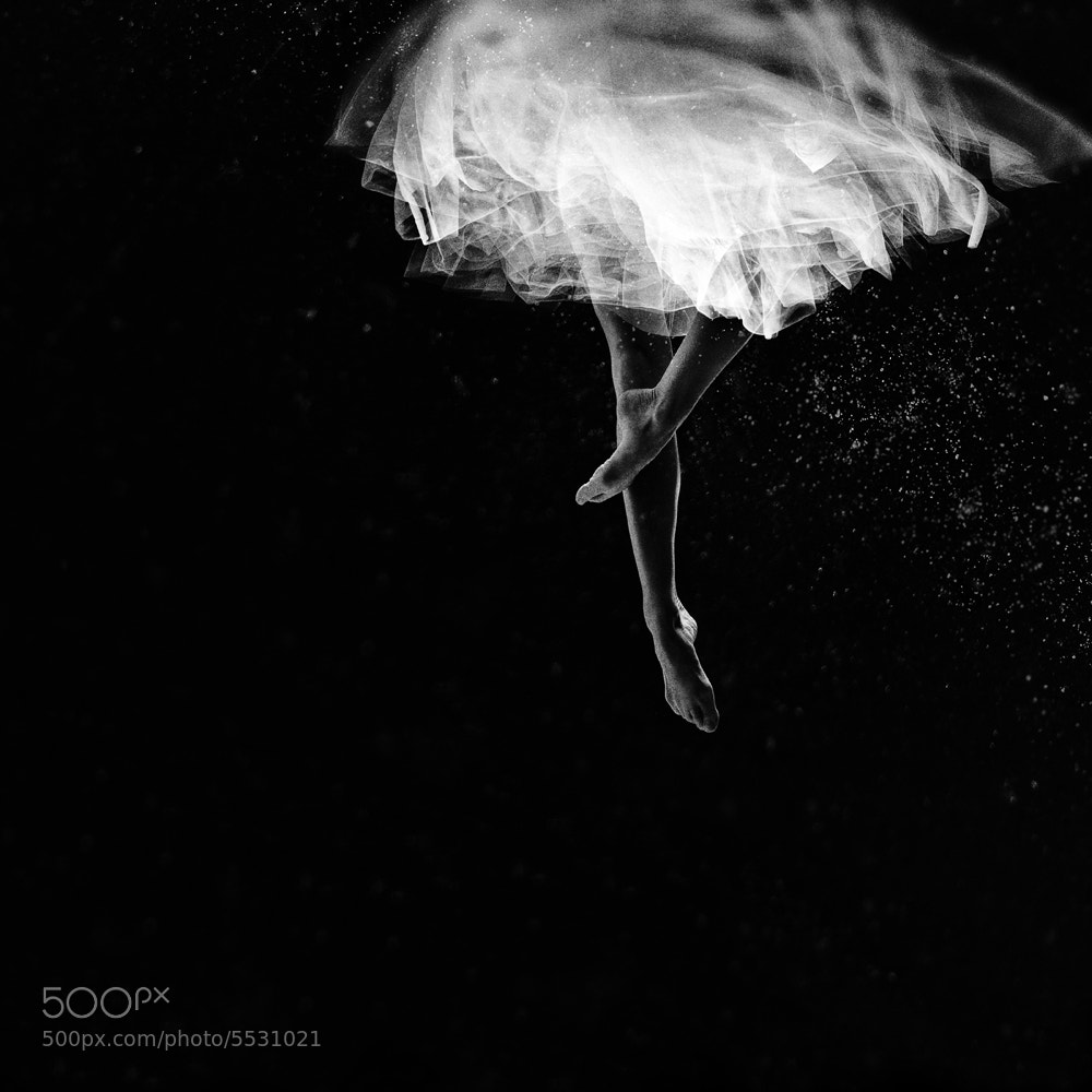 Photograph Ballerina I by Vanessa Paxton on 500px