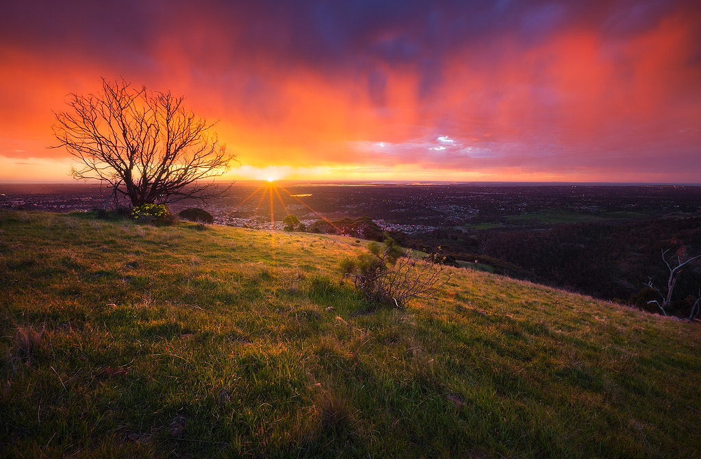 Photograph Set Fire To The Rain by Dylan Gehlken on 500px