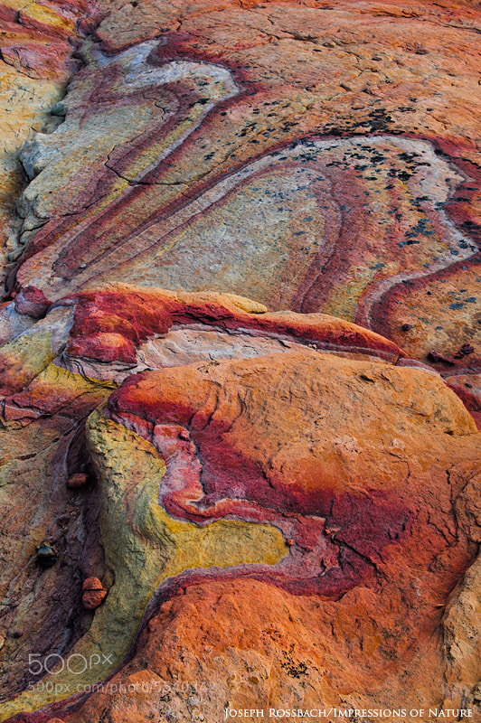 Photograph Sandstone Snake by Joseph Rossbach on 500px
