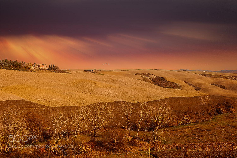 Photograph Tuscany dream by Ivan Bertusi on 500px
