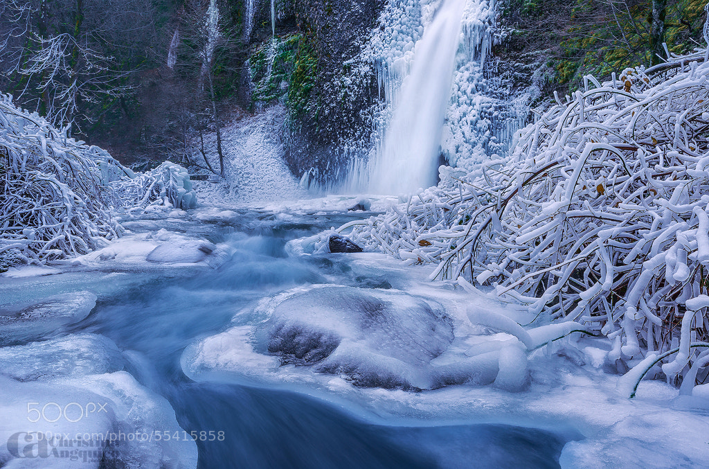 Photograph Icecapade by Christina Angquico on 500px