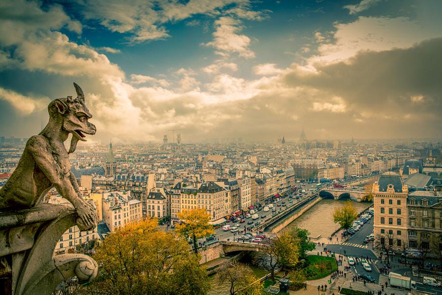 The roof of Notre Dame Paris