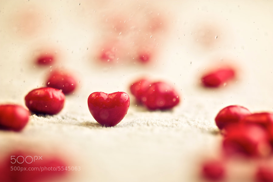 Photograph 37/365 - Piece of love.. by Jozef Vaclavik on 500px