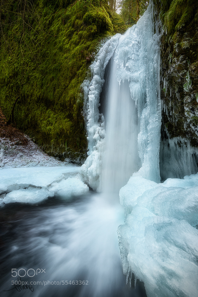 """Photograph Winter Veil of Mossy Grotto by TJ """"TJ Thorne"""" Thorne on 500px"""