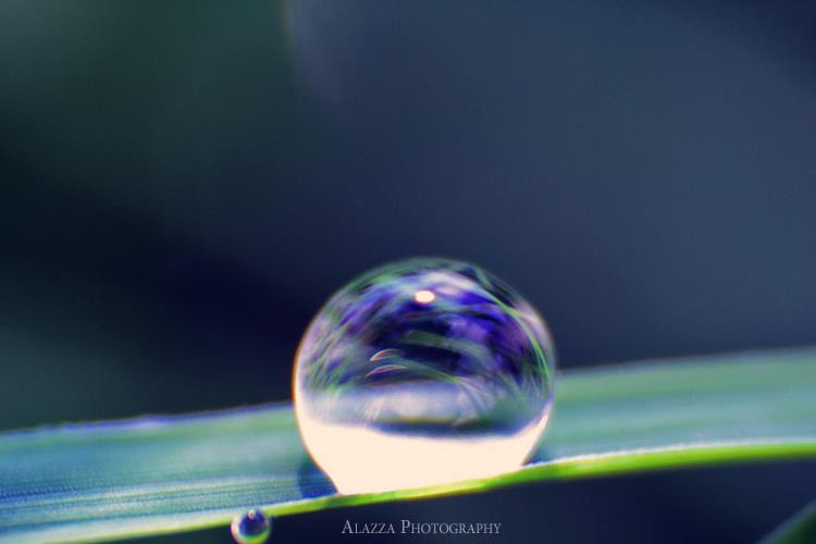 Photograph Drop by Alazza  Alhooti on 500px