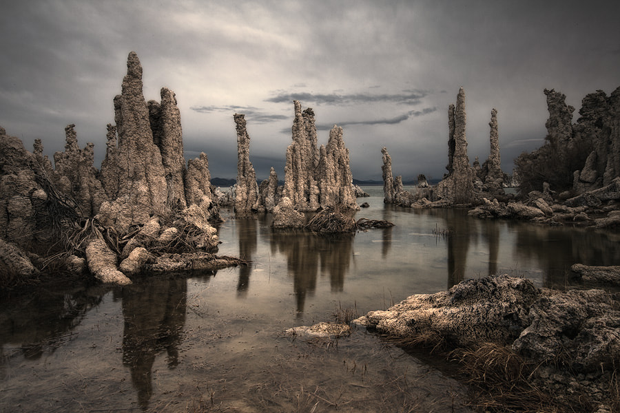 Photograph Fantastic world of Mono Lake by Sam Dobson on 500px
