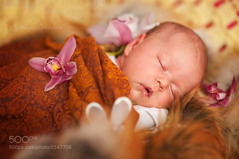 Photograph Sweet dreams by Natalia Deksbakh on 500px