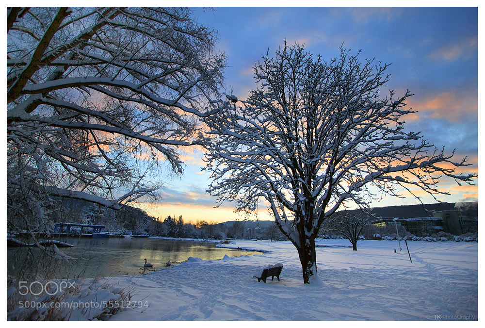 Photograph A cold winter morning... by Tobi K on 500px