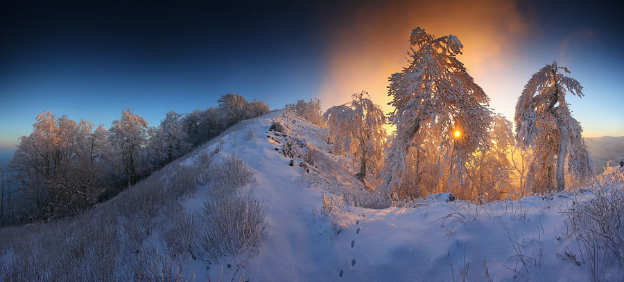 Photograph winter fairytale mood by Matej Kovac on 500px