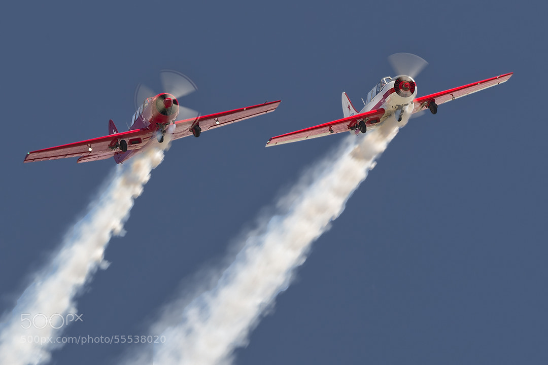 Photograph Yak-52 by Darek Siusta on 500px