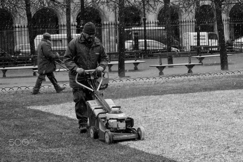 Photograph The gardener by Eduardo Daniel on 500px