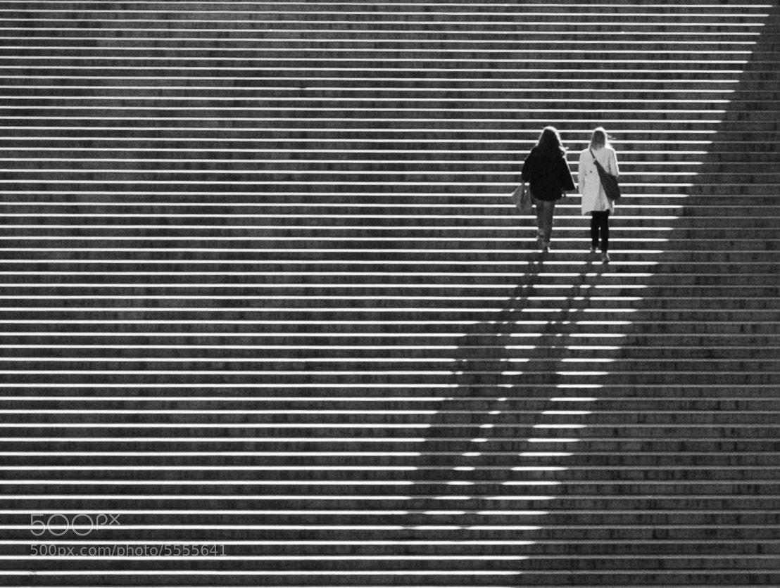 Photograph Les marches du Trocadéro by Adrien S-F on 500px