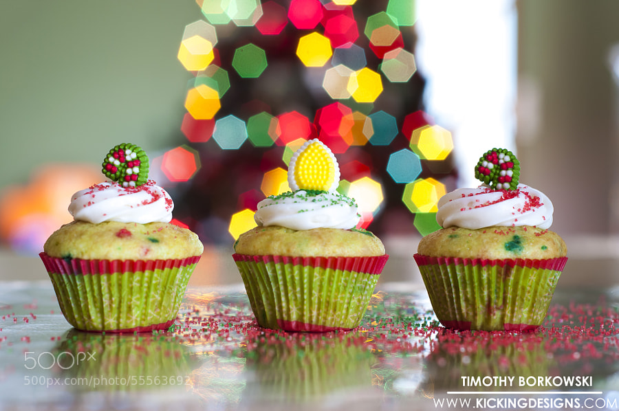Photograph Christmas Cupcakes by Timothy Borkowski on 500px