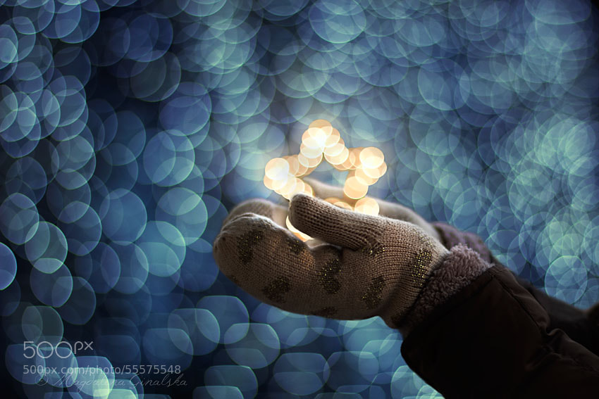 Photograph When You Wish Upon a Star by Magdalena Ginalska on 500px