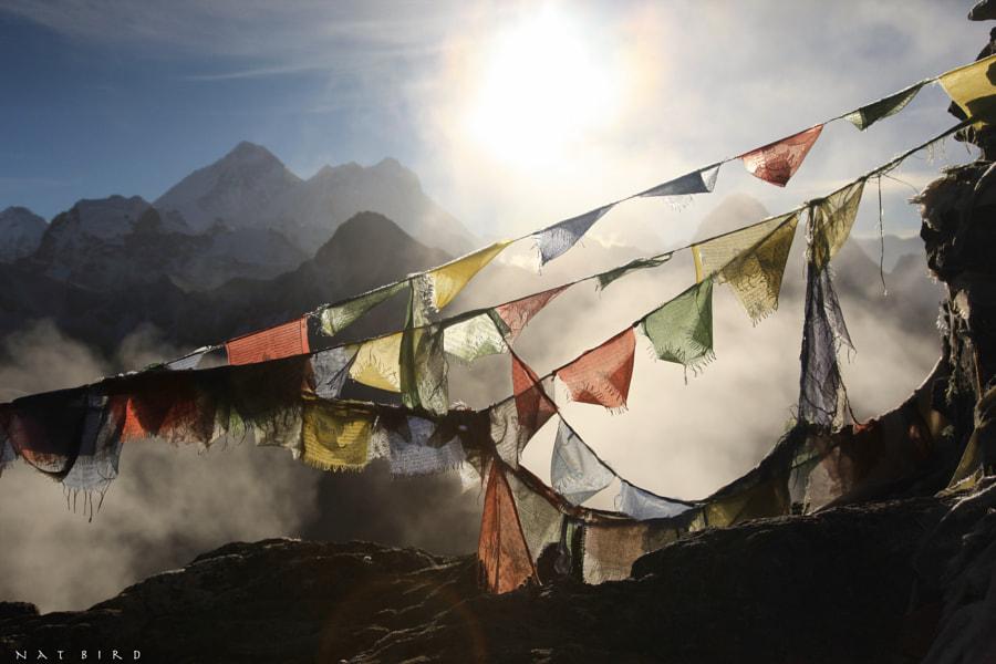 Everest from Gokyo Ri by Natalie Stonnill on 500px.com