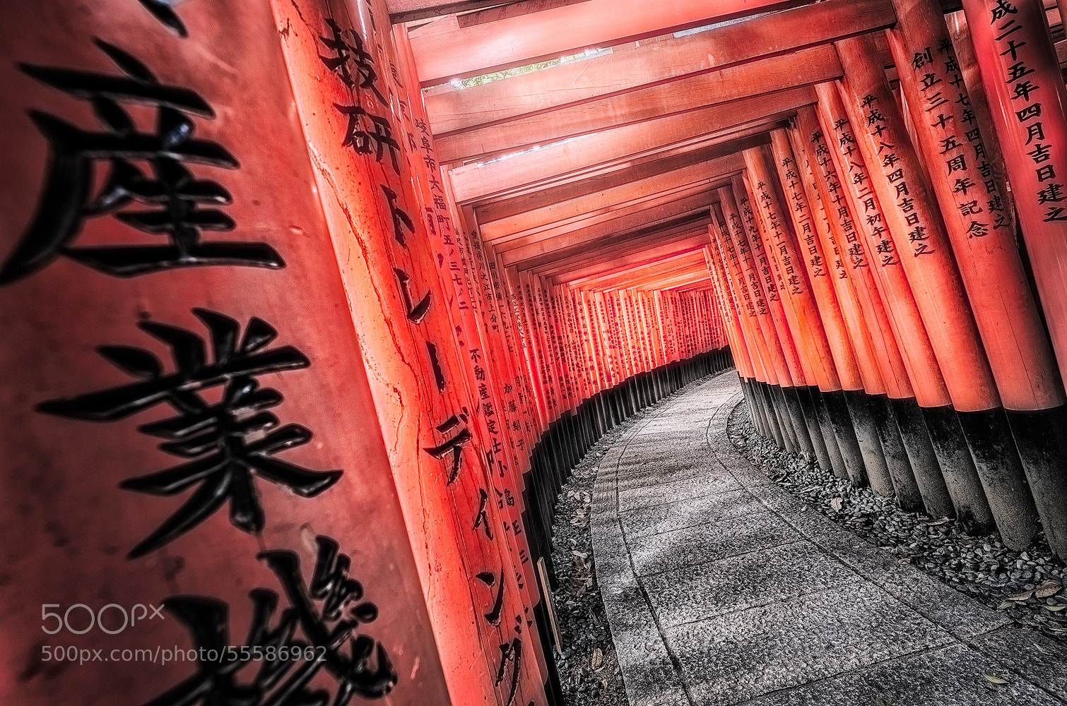 Photograph RED GATES by Yoshihiko Wada on 500px