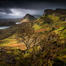 The lost world by Xavier Jamonet (XavierJamonet)) on 500px.com