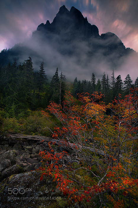 Photograph Piercing the Sky by Trevor Anderson on 500px