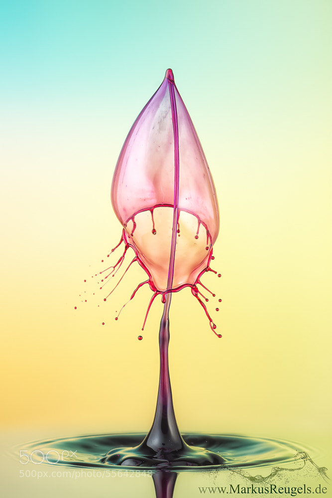 Photograph Liquid flame by Markus Reugels on 500px