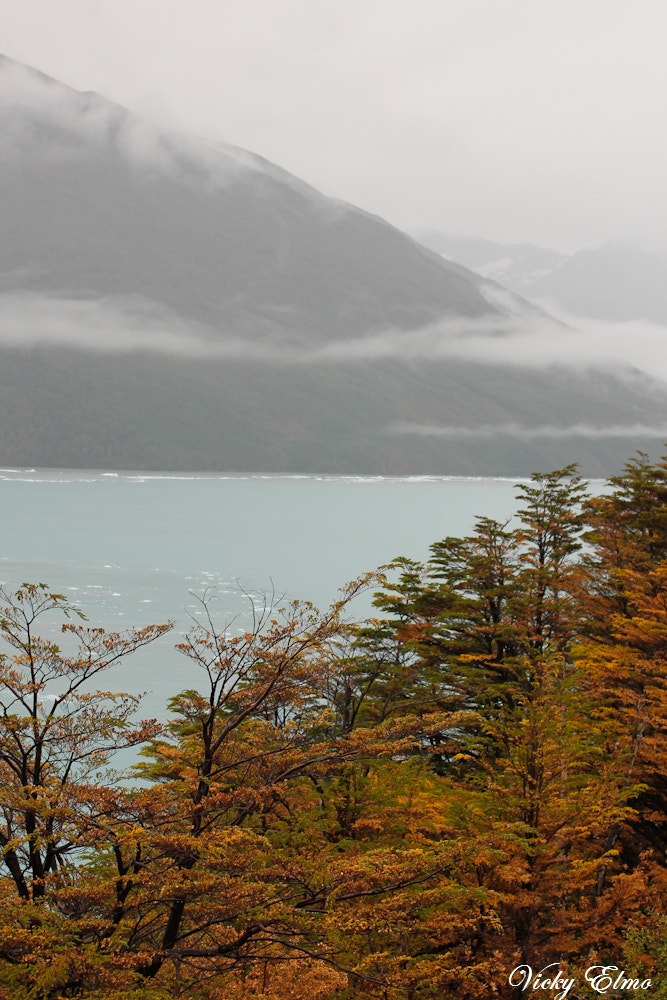 Photograph Patagonia Argentina by Vicky Elmo on 500px