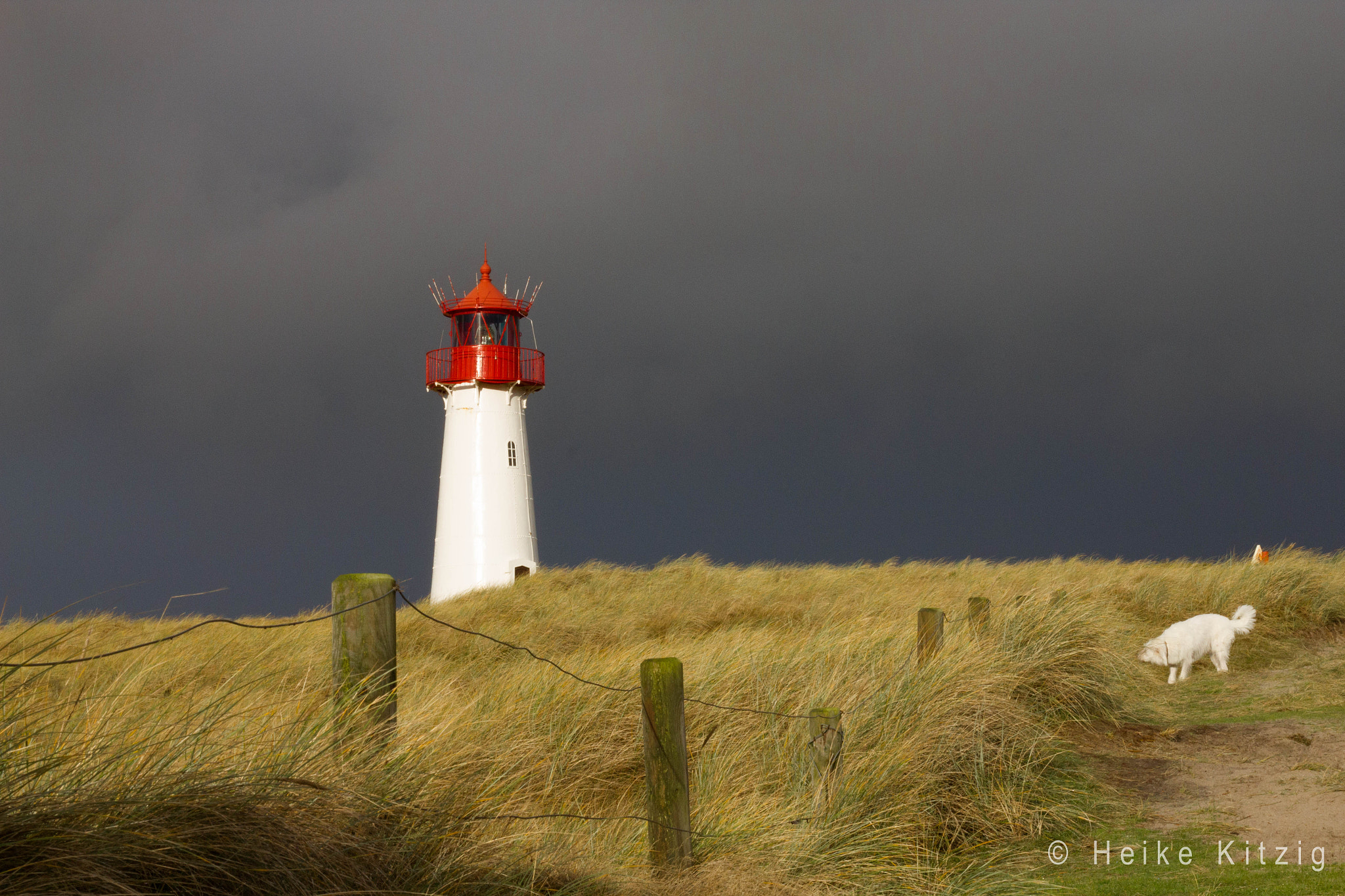 Photograph White red lighthouse in List Sylt with dog Emma by Heike Kitzig on 500px