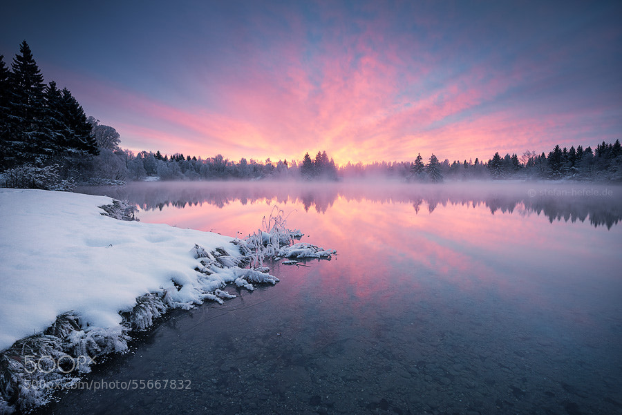 Photograph Enchanted in Ice by Stefan Hefele on 500px