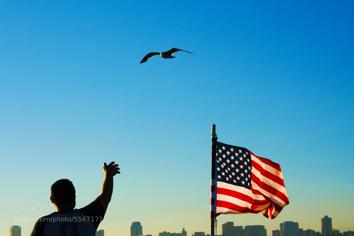 Photograph The man, bird and the flag by Abeed Janmohamed on 500px