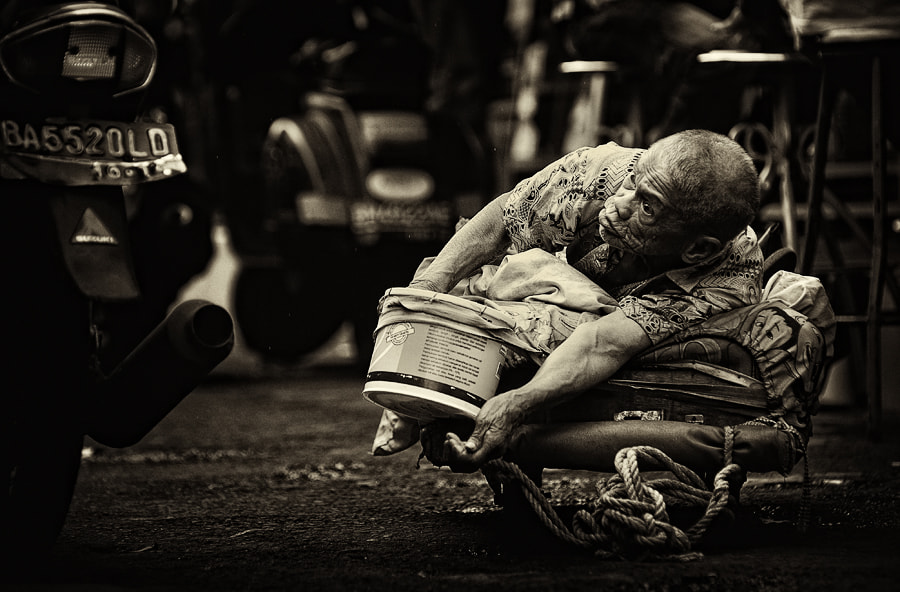 Photograph Looking for Sympathy... by adib muhandis on 500px
