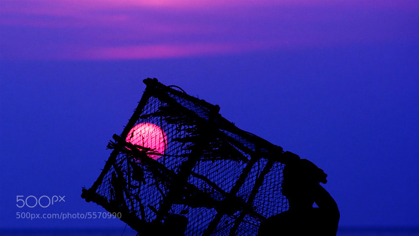 Photograph catch the sun by Bussabar Boo nga on 500px