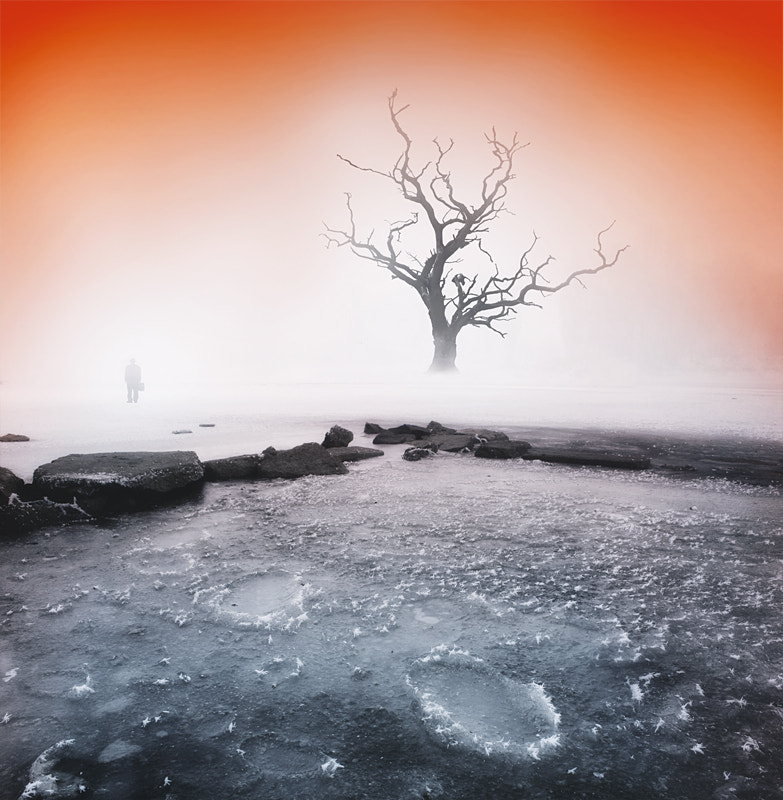 Photograph Frozen silence... by Heaven Man on 500px