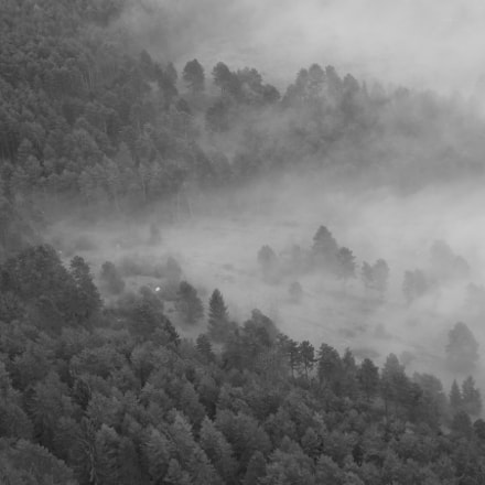 the approaching fog