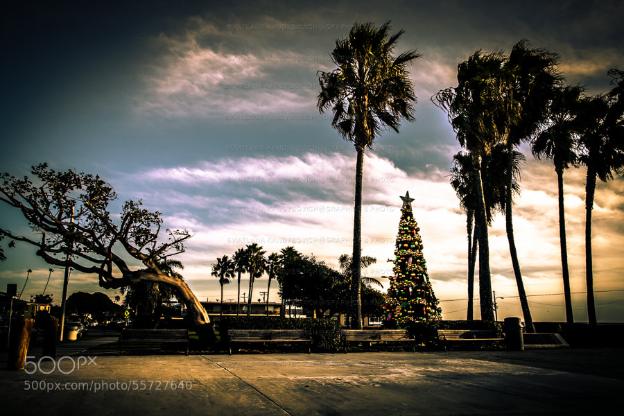 Awaiting Christmas by Sviatlana Kandybovich on 500px.com