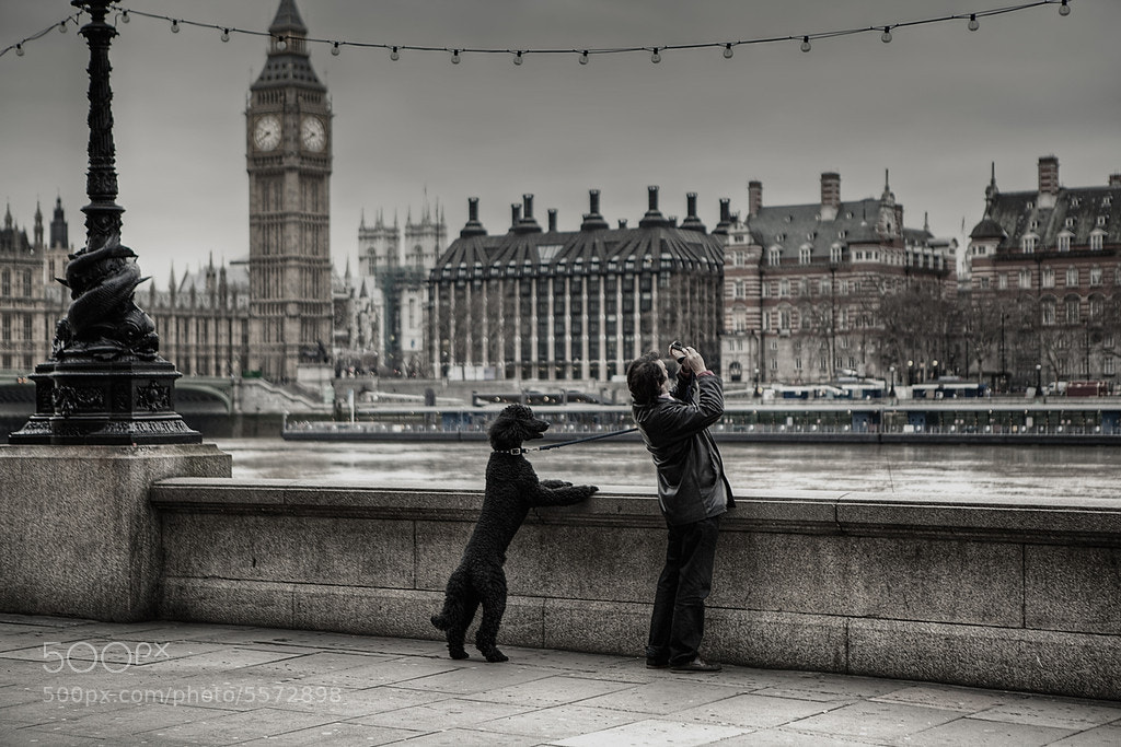 Photograph A Tale of Two Cities by Michael Murphy on 500px