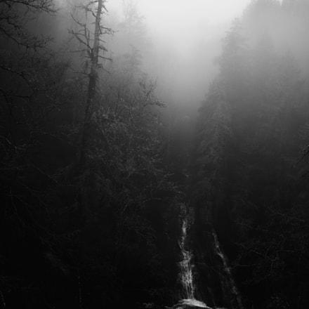 Batson Creek Falls Fog