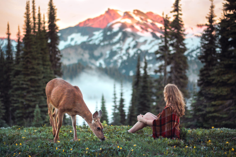 Photograph Creatures of the Meadow by Lizzy Gadd on 500px