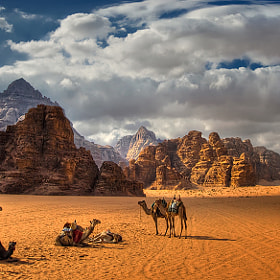 Fields full of desert by Robertino Kotev - rokoko (rokoko)) on 500px.com