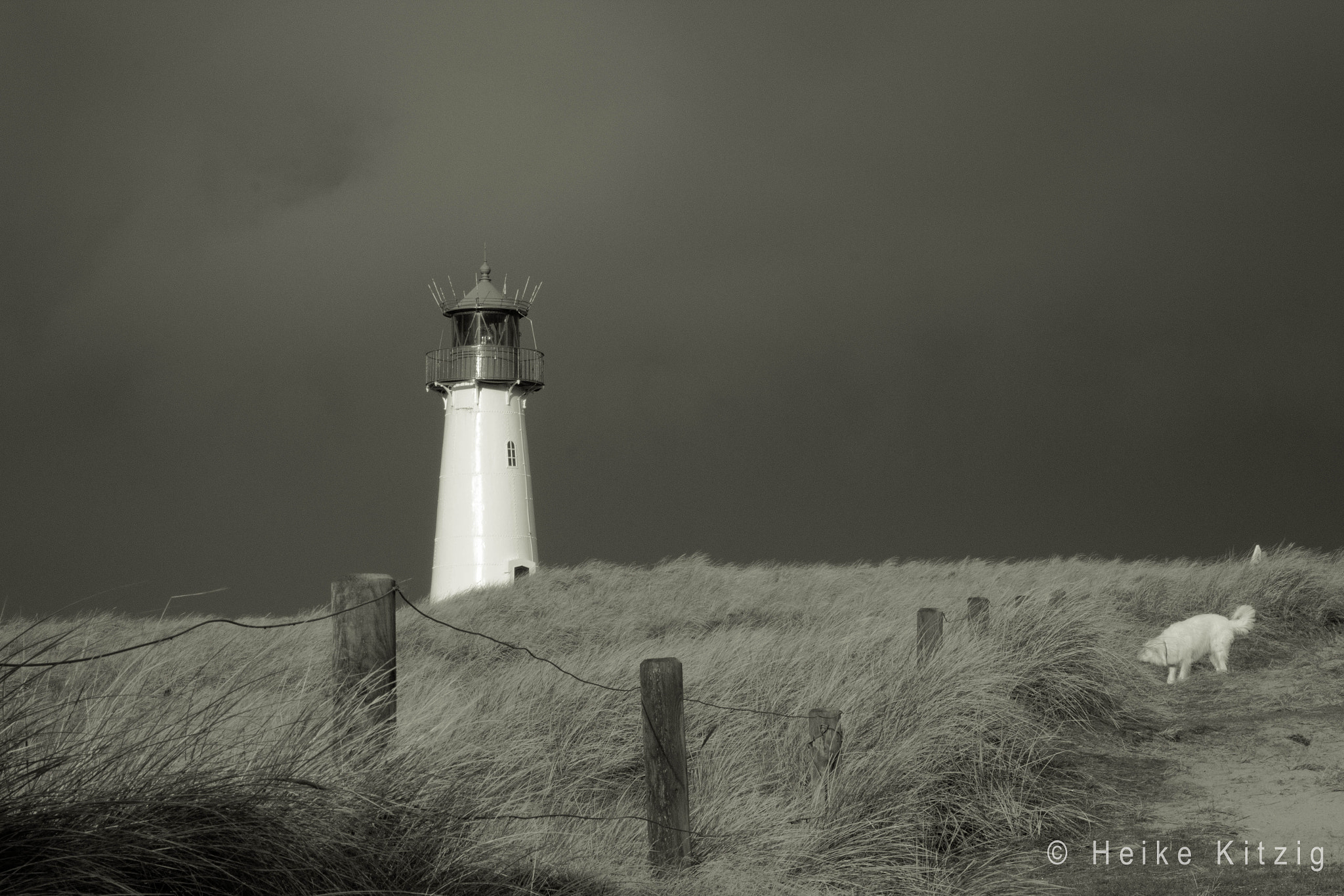 Photograph Lighthouse with dog Emma in List Sylt bw by Heike Kitzig on 500px