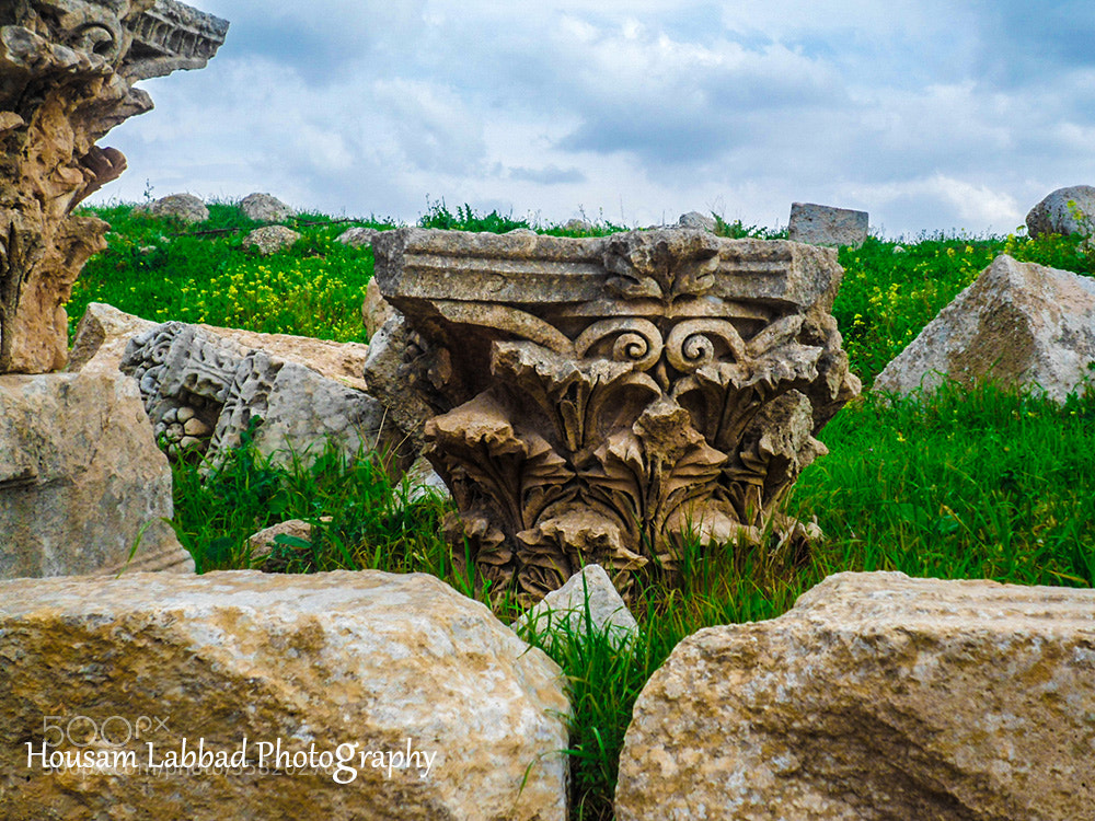 Photograph Ruins Among Spring by Housam A Labbad on 500px