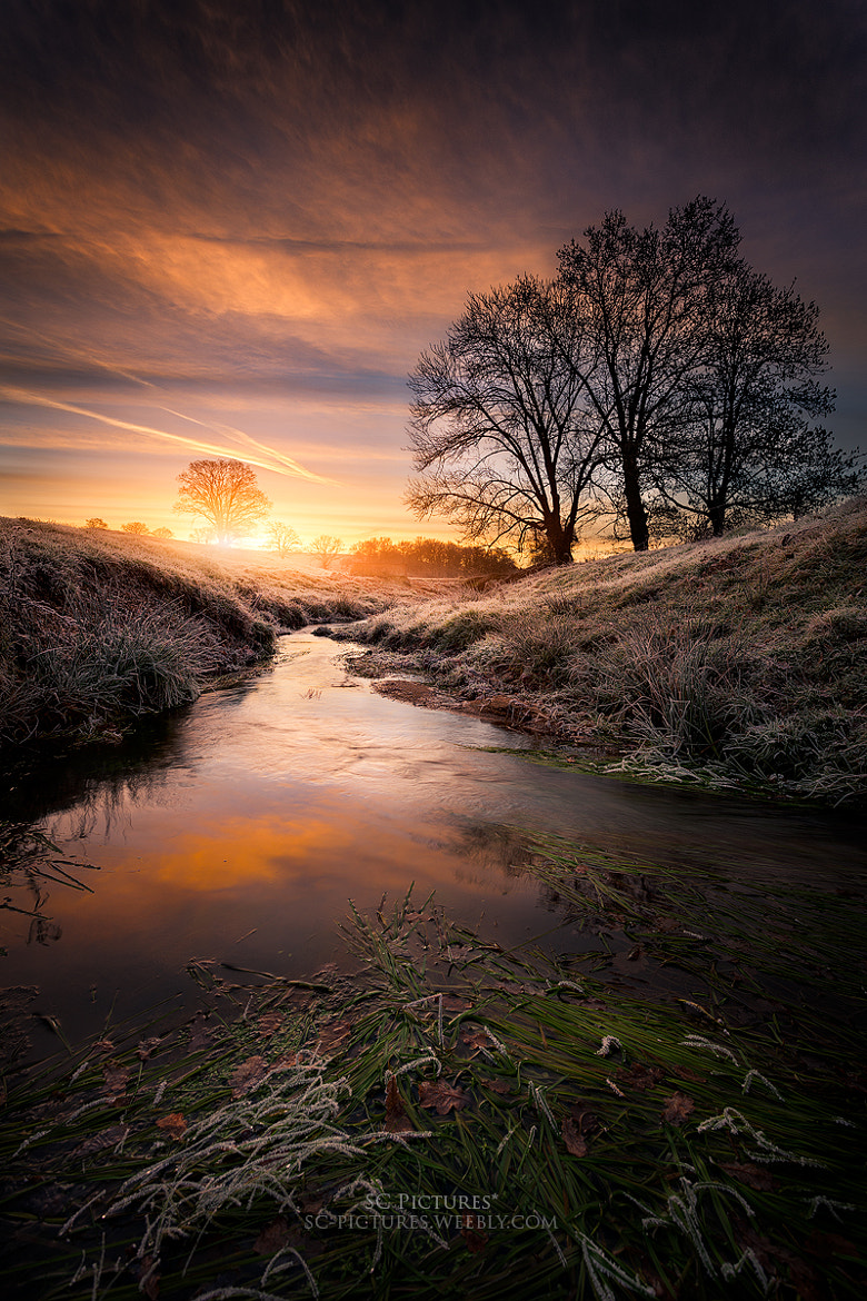 Photograph The stream sunrise by SC Pictures* on 500px